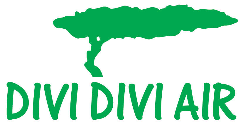 Divi_Divi_Air_logo